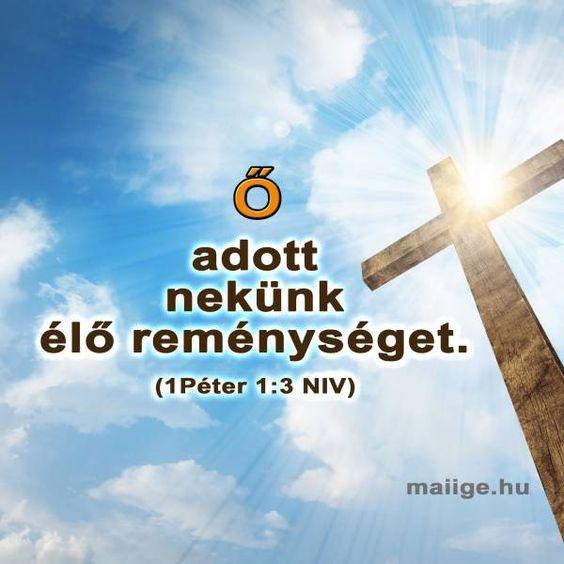 Ő adott nekünk élő reménységet - 1Péter 1:3,