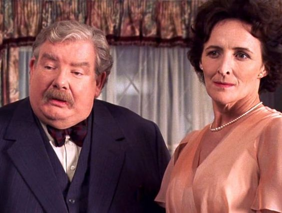 Does This Little Detail From Harry Potter Prove That the Dursleys Actually Cared…
