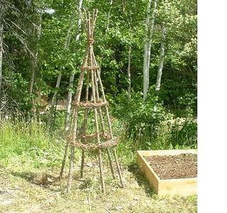 how to make a trellis from tree branches