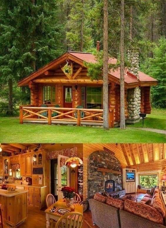 20 Fantastic Modern Cabins Home Design Ideas Artcraftvila Tiny House Cabin Log Cabin Homes Small Log Cabin