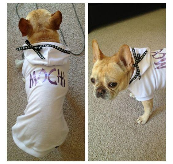 Customer photo:  meet Mochi a French Bulldog in her custom made Fetch hoodie $30.99  www.fetchdogfashions.com #puppy #dog #dogclothing #dogapparel #dogboutique #dogcouture #petboutique #doghoodie #frenchbulldog #bulldog