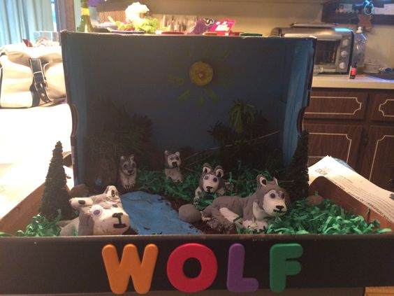 Arctic wolf diorama - photo#16
