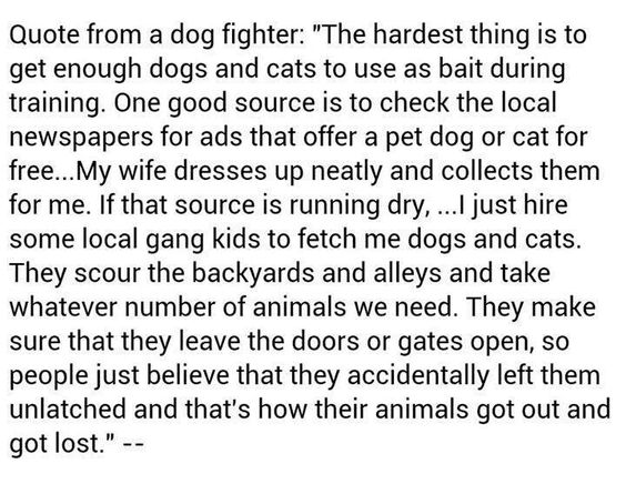 Dogs, PLEASE READ WHOLE THING?