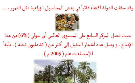 بوربوينت نماذج من الأنشطة الاقتصادية في دولة الإمارات العربية المتحدة Quick