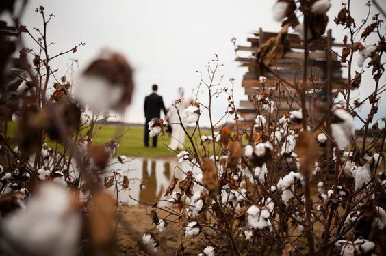 Country Weddings Archives - Country Outfitter Life