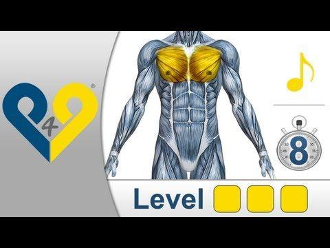 Treinamento peitorais - Nível 3 - YouTube
