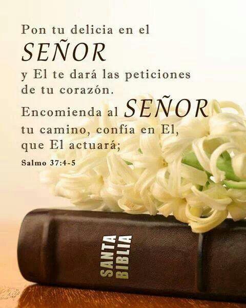Salmo 37:4-5 Deléitate asimismo en Jehová, Y él te concederá las peticiones de…