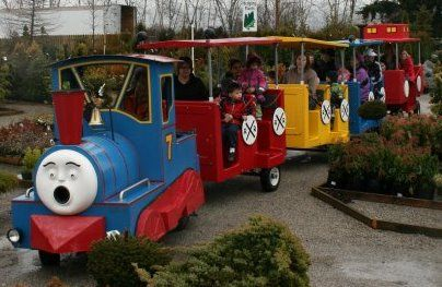 Take a train ride around our nursery on a sunny afternoon.