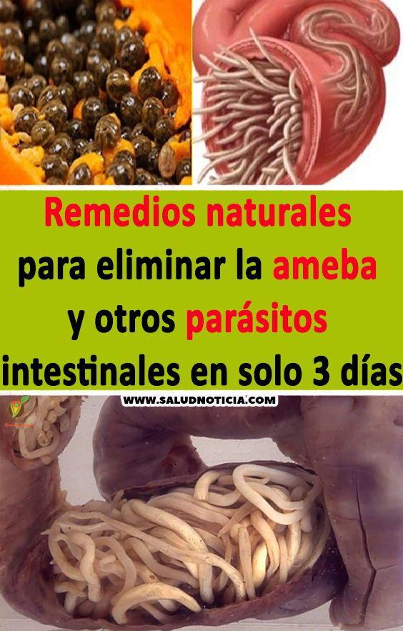 como eliminar parasitos estomacales