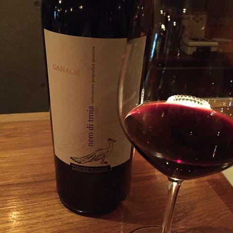 Rượu Vang Cantina Diomede Canace Nero Di Troia 13,5% - Chai 750ml