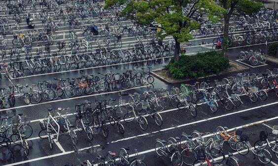 7283 http://sandman-kk.tumblr.com/post/131951420912#landscape #bicycle #urban #city #parkinglot #tree #street #niigata #japan #picoftheday #instagood
