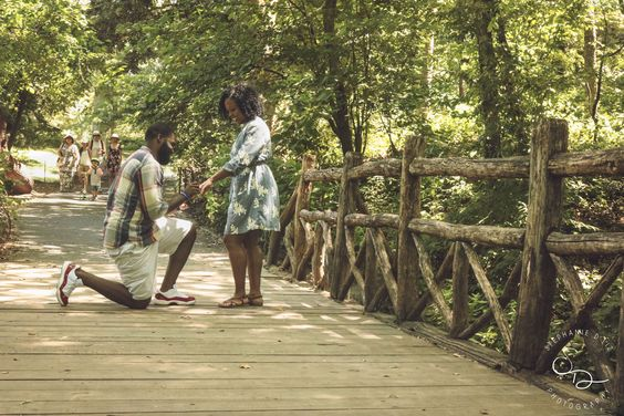 Surprise New York Proposal Photos In Central Park By Stephanie Dliz