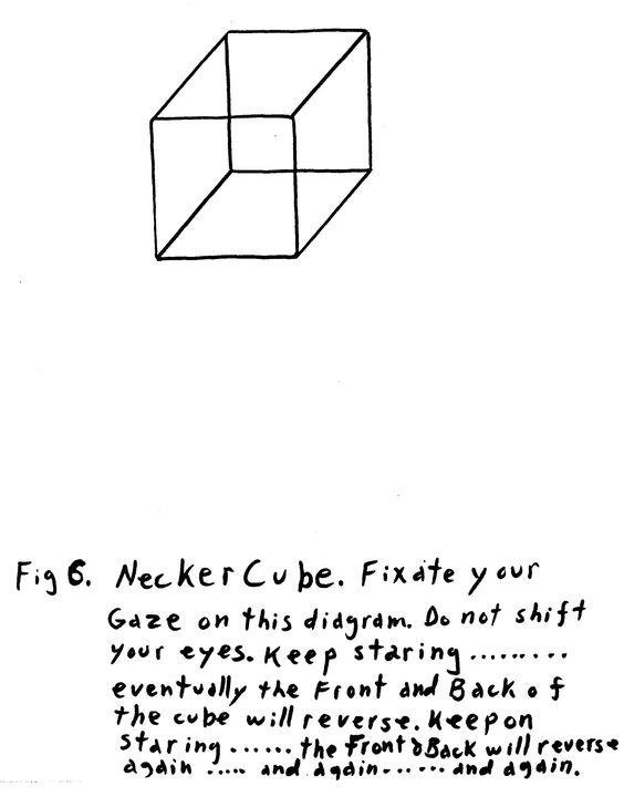 NeckerCube.jpg (2064×2638)