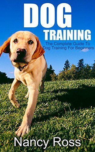Puppy training beginners