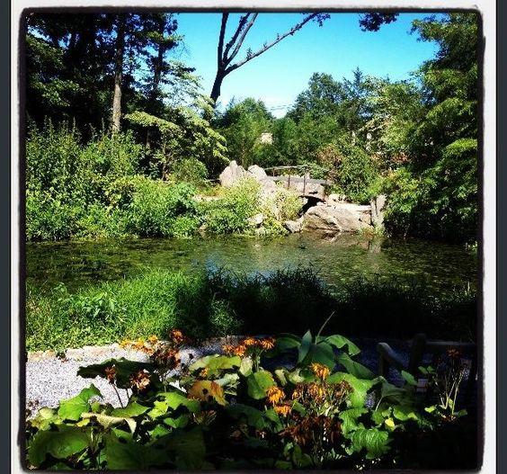 Clark Botanical Garden Albertson Long Island Ny