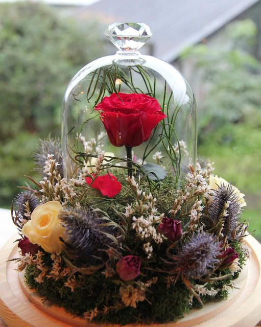 Beauty And The Beastexclusive Handmade Music Box Belle Etsy In 2020 Dried Flowers How To Preserve Flowers Preserved Roses