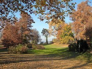 So schön kann der Park sein..., aber leider fehlt das Geld, um ihn dauerhaft zu pflegen. Feiern soll nun Aufmerksamkeit bringen...