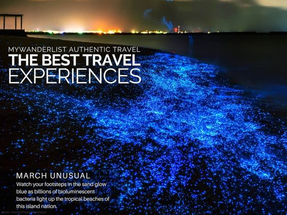 Maldives Beach Glowing At Night Watch Your Footsteps In The Sand - Maldive island beach glow