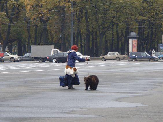 Passeando com o pet em St Petersburg, Rússia