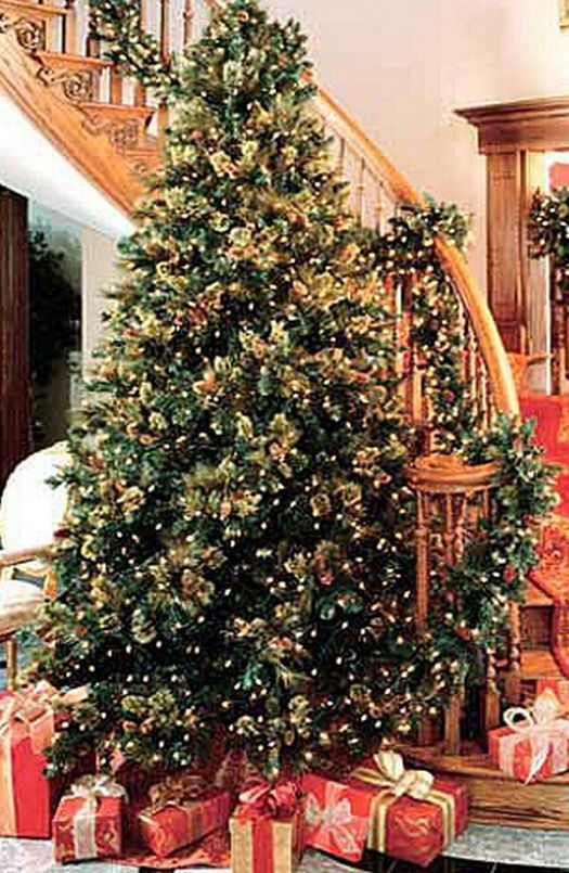 Studio 5 christmas open house ideas beautiful for Beautiful decorated christmas trees