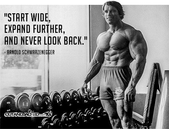 Armold Arnold Schwarzenegger Arnold Schwarzenegger Funny Arnold