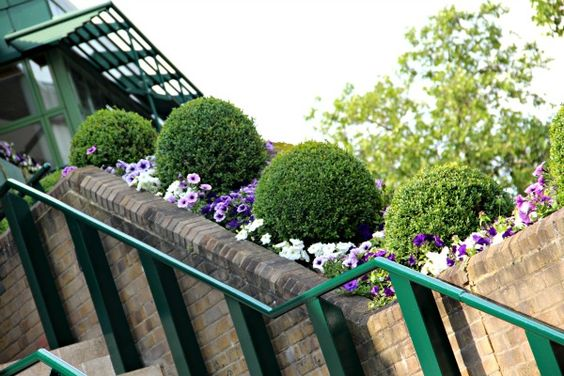 A day at Wimbledon with Lavazza #NewTradition - Part 3  More info here: http://teatimeinwonderland.co.uk/lang/en/2013/06/29/a-day-at-wimbledon-with-lavazza-newtradition-part-3  Killing time #inthequeue? Enter to win a Lavazza #AModoMio coffee machine here http://ow.ly/lNHen  #NewTradition #Wimbledon #win