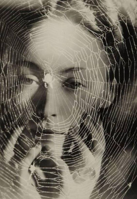 Web Of A White Spider