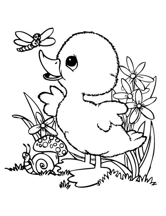 Print Baby Daisy Duck And Minnie Mouse S5708 Coloring Pages Free Minnie Mouse Coloring Pages Disney Coloring Pages Cartoon Coloring Pages