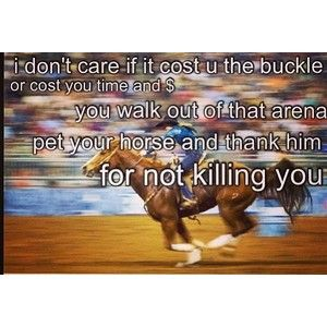 barrel racing quotes | Horse, Barrel Racing, and Rodeo Quotes.