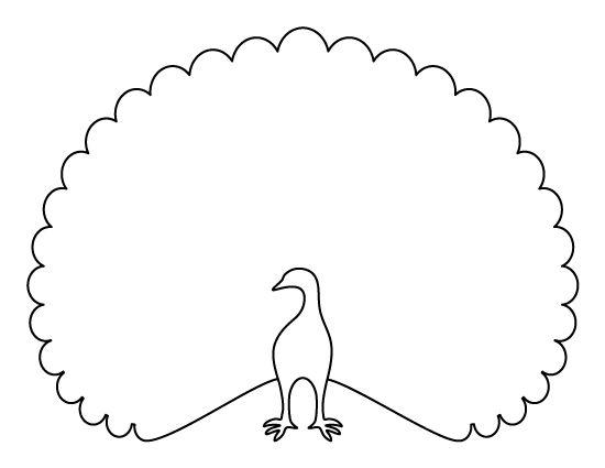Peacock body outline - photo#3