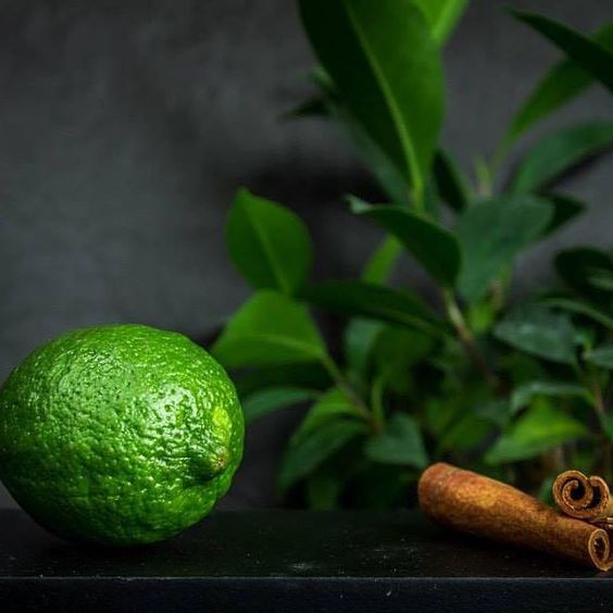 #lemon #myphoto #toyechkinaphotography #darkfoodphotography #food #foodphotography #cinamon #green #instafood #instagood #instalove #instadaily #лайм #лимон #корица #еда #фотография #даркфудфотография