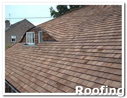 Roofing Shingles Before Entering A Contract With A Roofer Consult The Better Business Bureau They Ll Be Able To Tell You Cool Roof Roof Repair Roofing