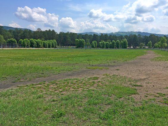 Огромное футбольное поле в свободном доступе на СибВО. Фото: Evgenia Shveda