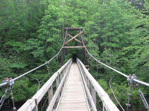 Benton MacKaye Trail, Cherokee National Forest