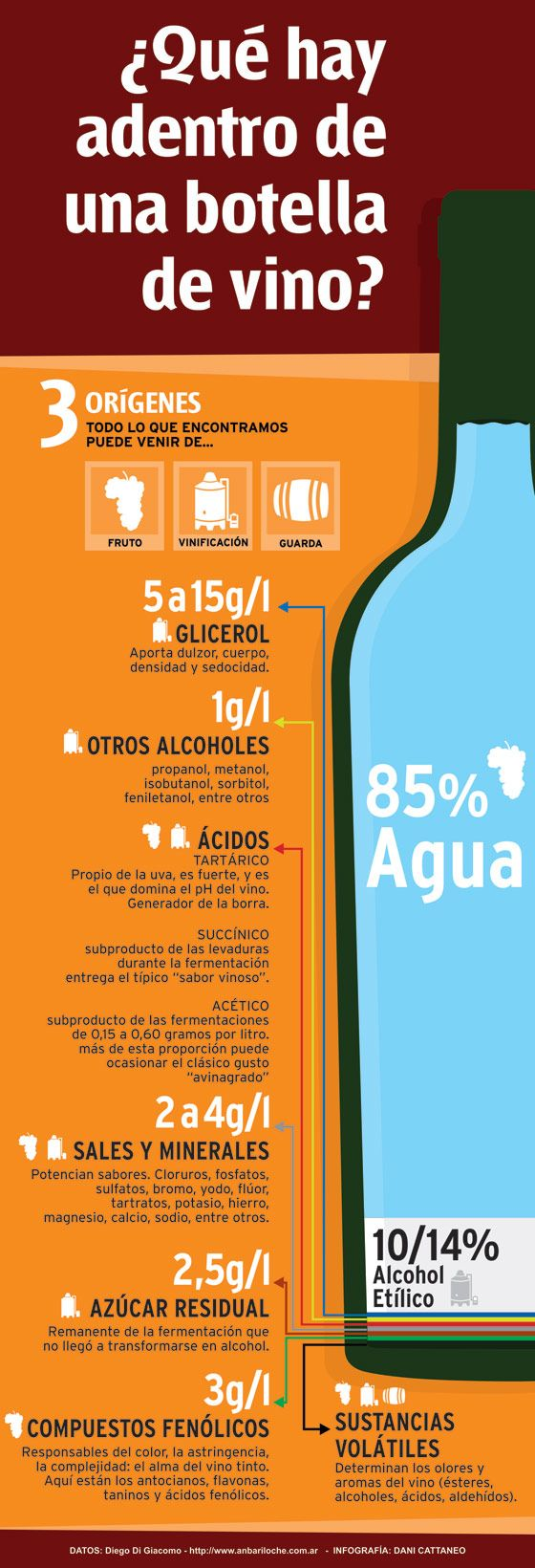 10 infografías sobre el vino que te van a interesar   The Big Wine Theory