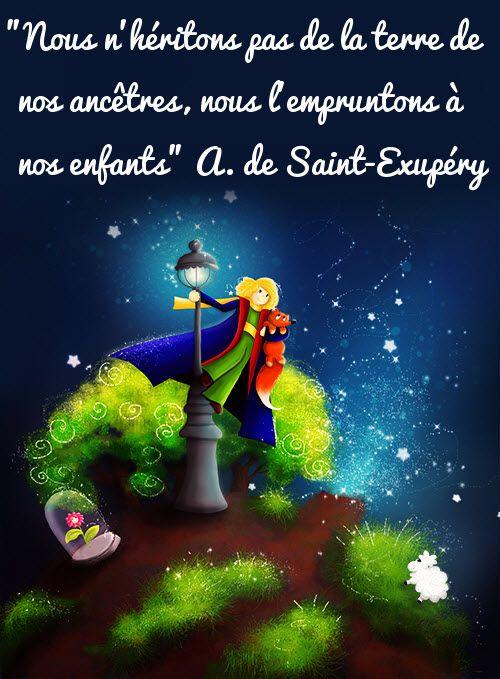 Le petit prince de St Exupéry - Page 2 Eb5d0c7b3d771fa6faf10a82adb4d23e