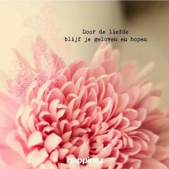 Citaten About Love : Quote happinez pinterest deur de deuren en