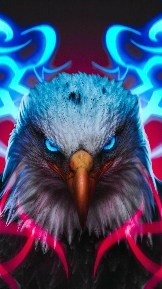 Imagens Lindas Eagle Wallpaper Eagle Images Cool Wallpapers For Phones Cool eagle wallpaper 3d