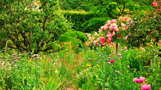 https://flic.kr/p/FG1jEs   Loire - Normandie - Jardin de Giverny