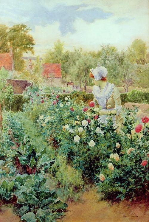 Dahlias, Alfred Glendering (British,  (1861-1907).