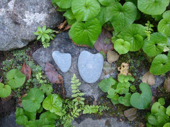 Wild Alaskan Hearts