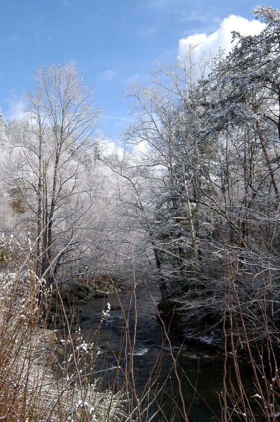 Winter wonderland in the Smokies