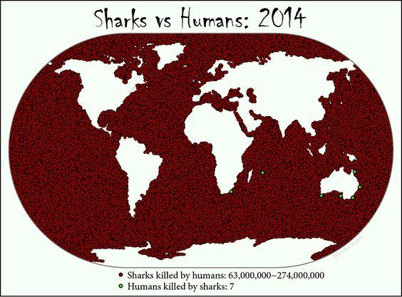 #Sharks vs #Humans