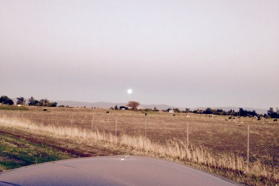 Moon going down as sun comes up in Northern California
