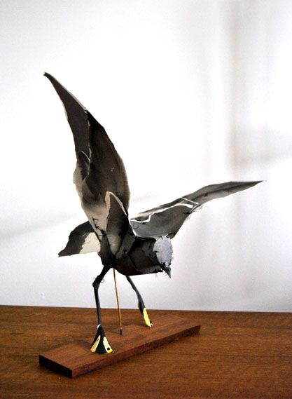 Storm Petrel by Anna Wili Highfield