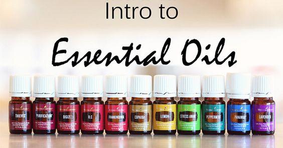101 into to essential oils