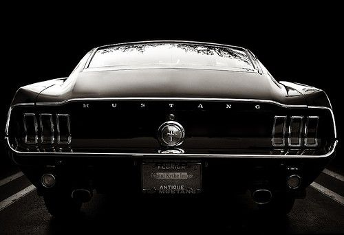 Black Pony Transport Pinterest Muscles Cars And Mustang
