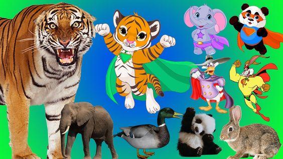 Superheroes Finger Family Song - Mega Finger Family Collection! | Handplaytv Animals for Kids