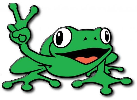 Explore lizards n frogs frogs frogs and more