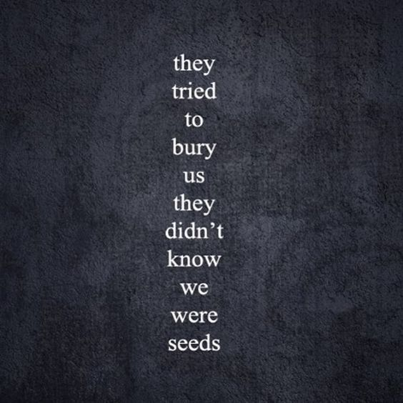Inspiring quote: THEY TRIED TO BURY US THEY DIDN'T KNOW WE WERE SEEDS. #quote #seeds #inspirational #hope
